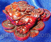 Жаба на монетах кам'яна крихта коричнева (7х6х3,5 см)