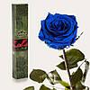 Одна долгосвежая роза FLORICH в подарочной упаковке.Синий Сапфир 7 карат, средний стебель. Харьков