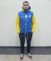 Спортивная куртка, зима
