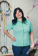 Блуза женская шифон больших размеров 50__56-58