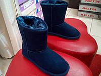 Зимние  замшевые угги  SOPRA синие