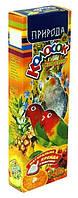 Лакомство Природа Колосок для средних попугаев, мультифрукт, 140г