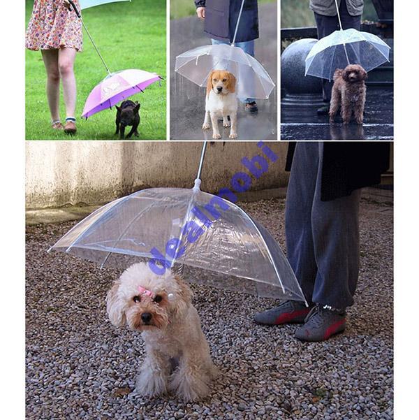 Зонтик (зонт) для выгула собак в дождливую погоду