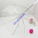 Зонтик (зонт) для выгула собак в дождливую погоду, фото 6