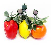 Магниты (фрукты, овощи, ягоды) пластик-24 шт.
