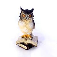 Статуетка Пугач на книгах 02-90104A