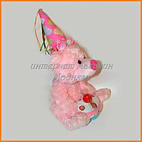 Механическая игрушка Медведь в колпаке с вентилятором №2082