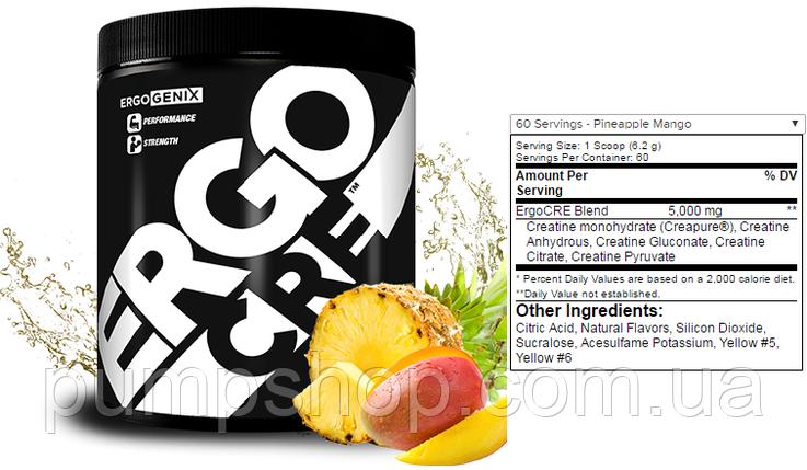 Креатиновый микс ErgoGenix ErgoCRE -60 порций, фото 2