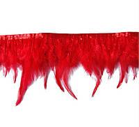 Перья декоративные петуха на ленте Красные 25 см