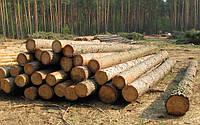 Продам лес круглый