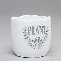 """Вазон из бетона для цветов """"Plant"""" белый, набор 6 шт"""
