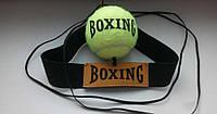 Fight Ball Everlast (Файтбол) Боевой Мяч на резинке. Файт бол Тренажер