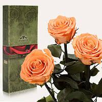 Три долгосвежие розы FLORICH в подарочной упаковке. Золотистый хризоберилл 7 карат, короткий стебель. Харьков, фото 1