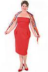 Платье - корсет  женское, фото 4