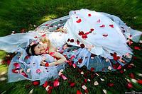 Акция! Лепестки роз  600 шт  (красные, розовые, белые, сиреневые)для романтического вечера