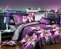 Двуспальный набор постельного белья Ранфорс №214
