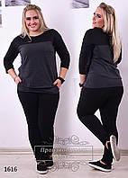 Женский спортивный костюм полированный турецкий трикотаж - двух-нить размеры 48,50,52,54,56