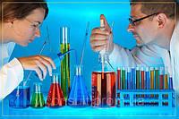 Получение протокола исследований на ГМО