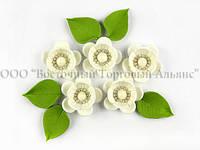 """Квіти з мастики - Набір """"Яблуневий Цвіт"""" - Білий"""