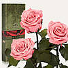 Три долгосвежие розы FLORICH в подарочной упаковке. Розовый кварц 7 карат, короткий стебель. Харьков