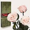 Три долгосвежие розы FLORICH в подарочной упаковке. Розовый Жемчуг 5 карат, короткий стебель. Харьков