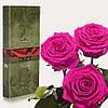 Три долгосвежие розы FLORICH в подарочной упаковке. Малиновый  Родолит 7 карат, короткий стебель. Харьков