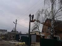 Удаление деревьев (валка, спил, обрезка)