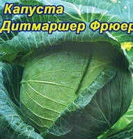 Семена капусты поздняя Дитмаршер