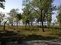 Участок на берегу Чёрного моря, фото 1