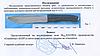 Нож Метательный Тигр 10816 профессиональный, фото 5