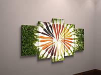 Картина модульная для кухни морковка холст часы