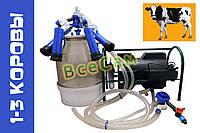 Доильный аппарат индивидуального доения Импульс ПБК-4 от 1-3 коров ( рез. Д.041 ) ведро поликарбонат 22 л., фото 1