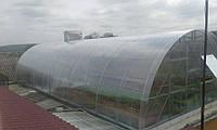 Теплица из поликарбоната 5х10х2.5 м. (поликарбонат 6 мм. в комплекте).