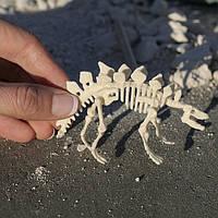 Мини-набор для раскопок динозавра