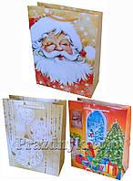 Подарунковий пакет 23х18 см