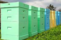 Ульи из пенополистирола – уютный дом для пчёл