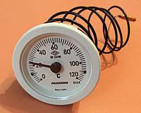 Термометр капиллярный PAKKENS Ø52мм / Tmax=120°С / длина капилляра L=1м        Турция