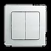 Двухклавишный настенный контроллер ZME серии Busch J. Duro 2000 — ZME_WCD2