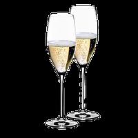 Набор бокалов для шампанского Riedel 2 шт 0,23 л 6416/48