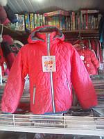 Дитяча демісезонна куртка для дівчинки, фото 1