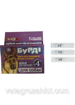 Капли БУРДИ противоблошиные с перметрином для собак №4, фото 2
