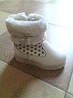 Детские зимние сапожки Clibee для девочки Польша