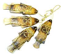 Рыбы связка