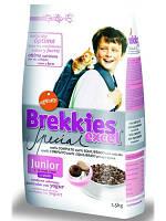 Brekkies Excel Junior (Брекиз Эксель Юниор) корм для котят всех пород 20 кг