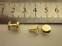 Хольнитен (заклёпка) односторонний 8 х8 х 8 мм золото