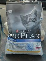Сухой корм для котят с курицей 10кг