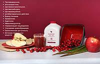 Натуральный Органический Сок Алоэ Вера, Алоэ Ягодный Нектар, Форевер, США, Forever Aloe Berry Nectar
