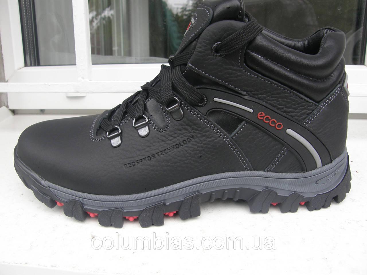 d47e09b2 Обувь зимняя мужская Ecco н89: продажа, цена в Днепропетровской ...