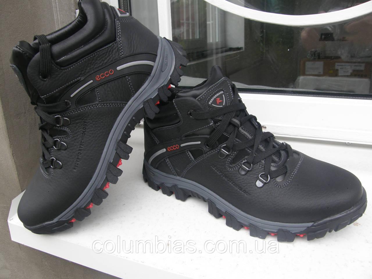 825cf656e1ea Ботинки зимние Ecco  продажа, цена в Днепропетровской области ...