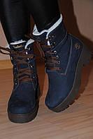 Ботинки синие зимние Timberland натуральный нубук код 1212